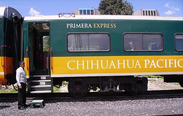 chihuahua5.jpg
