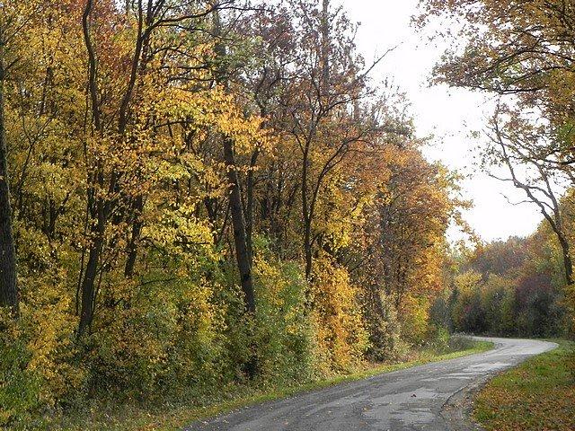 automne2011002.jpg
