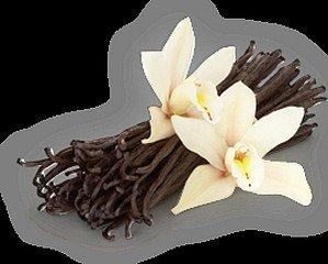 LA VANILLE dans LE SAVIEZ-VOUS ? vanille