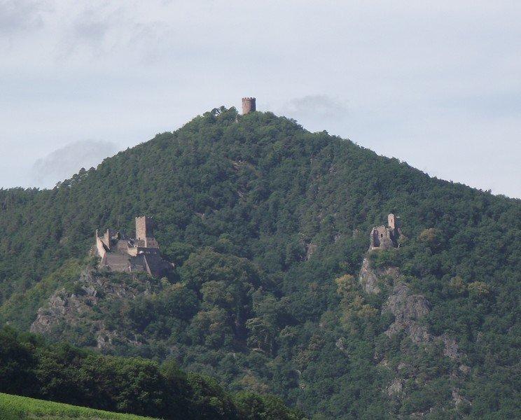 LES CHATEAUX DE RIBEAUVILLE (68) dans CHATEAUX Alsace-023