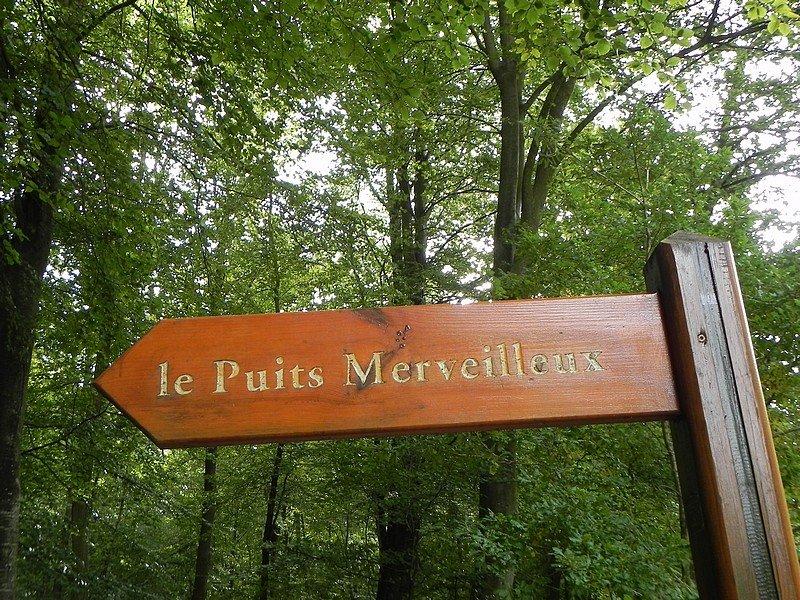 LE PUITS MERVEILLEUX (76 HAUTE NORMANDIE) dans RENCONTRES AU HASARD DE NOS BALADES normandie-153