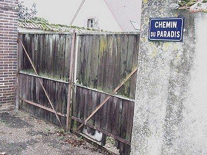 NOM DE RUE INSOLITE : JOIGNY (OISE) dans INSOLITE joigny