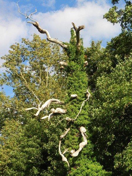 SCULPTURES NATURELLES dans RENCONTRES AU HASARD DE NOS BALADES normandie-112