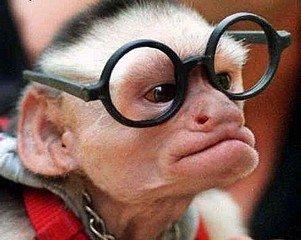 LES LUNETTES dans INVENTIONS lunettes