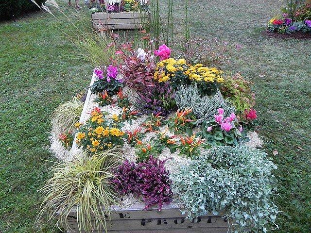 JARDIN EXTRAORDINAIRE jardin-extraordinaire-050