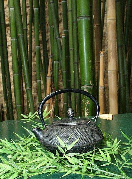 bambou5
