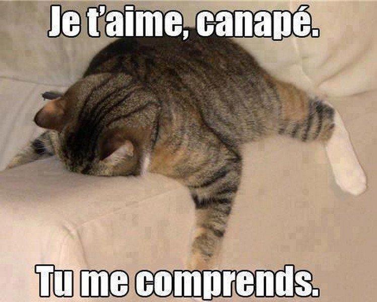 canape1